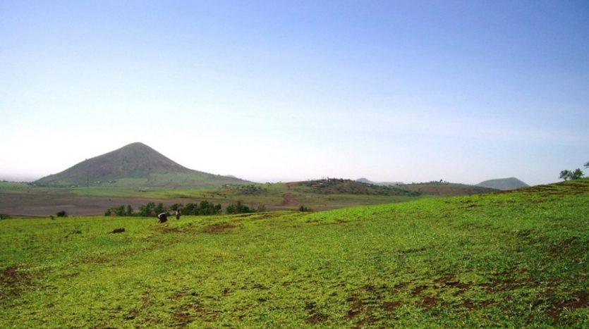 5 Acres For Sale In Kisongo-Arusha Tanzania