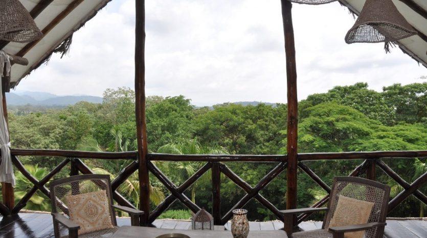 A Dream In Arusha4