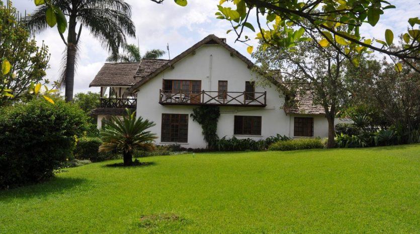 A Dream In Arusha8