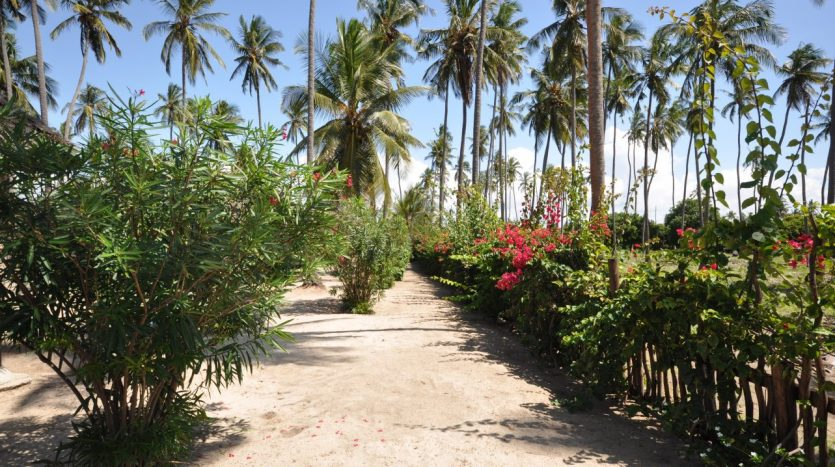 Beach Lodge at Sange-Tanga