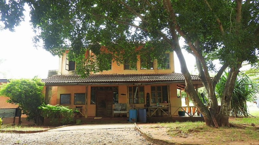 Farm For Sale 16 km Northwest of Tanga