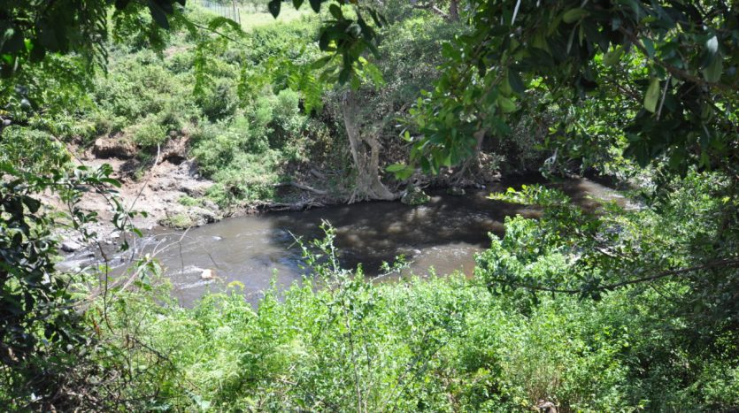 House For Sale In Usariver with 25 Acres10