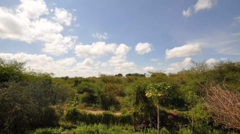 House For Sale With 3 Acres-Arusha