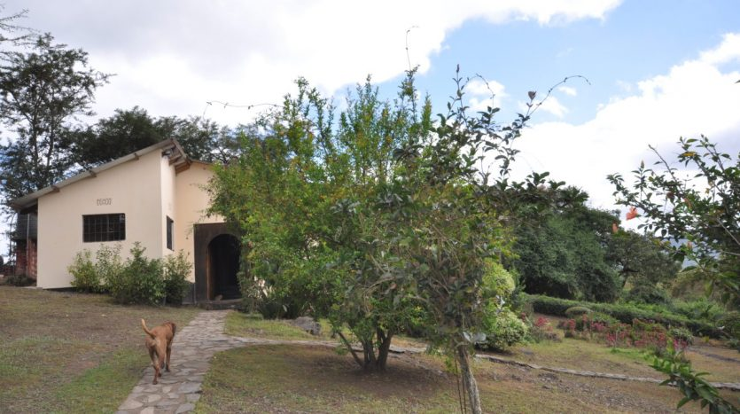 House With 7.5 Acres Border Arusha Nationak Park for Sale11