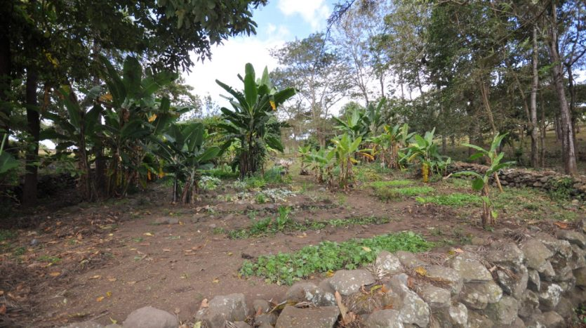 House With 7.5 Acres Border Arusha Nationak Park for Sale5