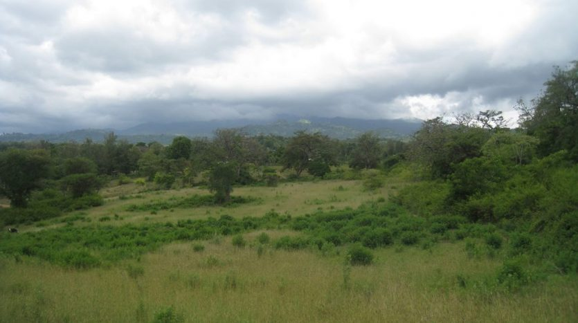 Plot For Sale 20 Acres-Green and Lush-Arusha