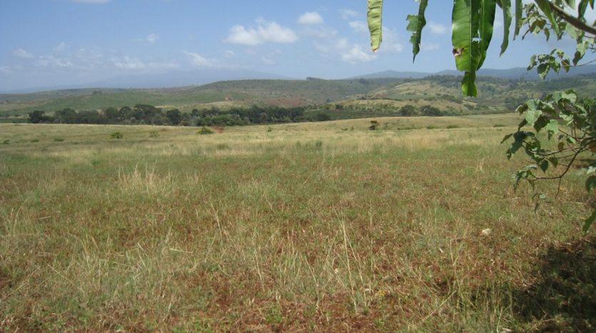 Potential Land For Sale In Karatu-Arusha Tanzania2