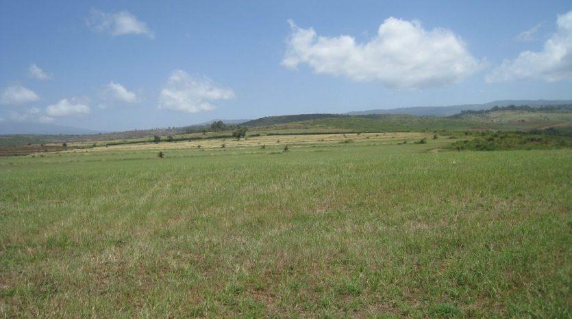 Potential Land For Sale In Karatu-Arusha Tanzania4